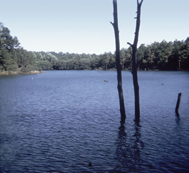 Kelly Barnes Lake