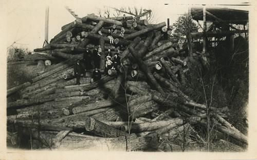 Logs to build Stewart